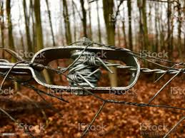Old Wire Tensioner Of A Wire Fence In Closeup Stock Photo Download Image Now Istock