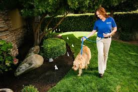Invisible Fence Gives Free Consultations On Their Pet Containment System
