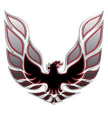 1970 1981 Trans Am Decal Custom 43x42 Hood Bird Silver Red Mine Motorcycle Painting Bird Silver Trans Am