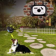 Explore Wireless Electric Fences For Dogs Amazon Com
