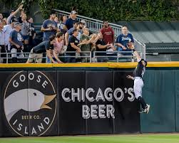 Adam Engel makes robbing homers a habit at Guaranteed Rate Field ...