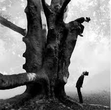 Rodney Smith - blas FOTOGRAFÍA