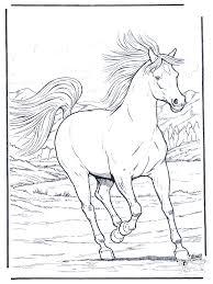 Galopperend Paard Kleurplaten Paarden