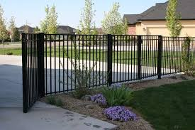 Tall Wrought Iron Fence Around House Or Do Wood Slat Like The Deck Fence With Podocarpus Tall Hedge Wrought Iron Fences Iron Fence Iron Fence Panels