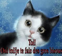 """Résultat de recherche d'images pour """"gif image de chats"""""""
