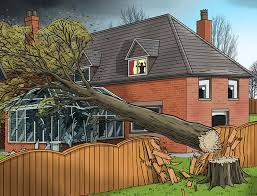 My Neighbour S Tree Fell And Caused Damage Is He Liable Financial Times