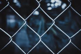 1000 Amazing Chain Link Fence Photos Pexels Free Stock Photos