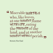 quotes about war in the iliad quotes