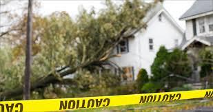 Andrea F. Butler | Disaster Insurance Claims | Long & Long