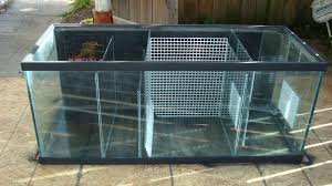 aquarium sump r fish tanks
