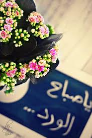 أحلى صور صباح الخير جديده 2016 اجمل الصور Good Morning Flowers