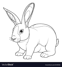 rabbit coloring page royalty free