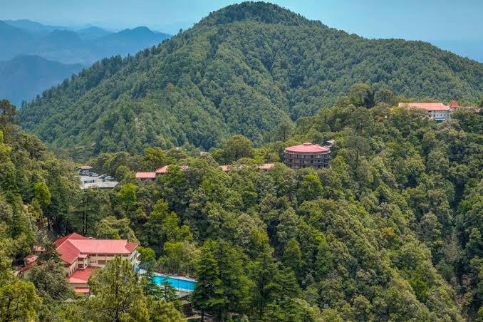 "Image result for masoori range forest"""