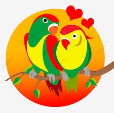 طيور الحب الطيور الألوان زوجين Png وملف Psd للتحميل مجانا
