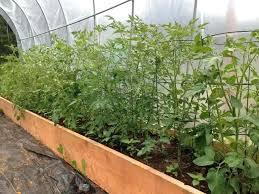 raised bed vegetable garden beds vinyl