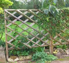 Rustic Trellis Panels Hartwells Fencing
