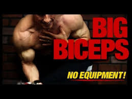 how to get big biceps in the home