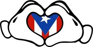 Puerto Rico Car Decal Sticker Boricua 100 With Flag 96 Collectibles Decals Stickers Intra Com Au