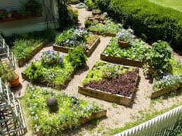 small space edible landscape design