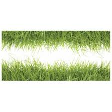 Grass Wall Decal Wayfair