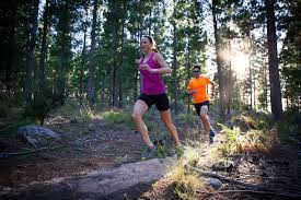 cross country workouts and training
