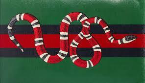 gucci snakes desktop wallpapers
