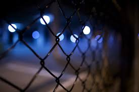 Chain Link Fence Pictures Download Free Images On Unsplash
