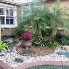 landscape palm tree design ideas