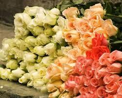 أجمل خلفيات ورد 2020 لكل عشاق الورود قل ودل