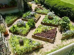 20 small vegetable garden ideas that
