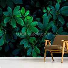 Green Jungle Leaf Wallpaper Mural Wallsauce Us