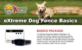 Amazon Com Electric Dog Fence Basics Underground Dog Fence Containment System For Easy Setup And Most Complete Diy Pet Safety Solution 2 Dog 500 Feet Reliable Boundary Wire Extreme Dog Fence Pet Supplies