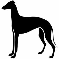 14 8 15 2cm Greyhound Dog Car Styling Decoration Decal Fashion Window Decoration Cartoon Car Sticker C6 1710 Stickers Deco Stickers Salonstickers Puzzle Aliexpress