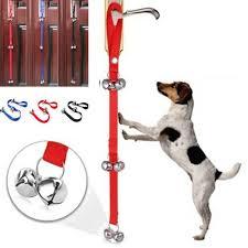 puppy dog potty bathroom house training