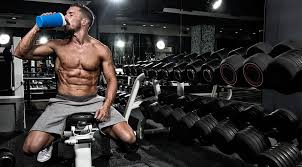 protein for your bodybuilding t