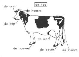 Index Of Boerderij Werkbladen