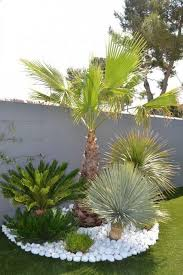 florida landscaping ideas front yards
