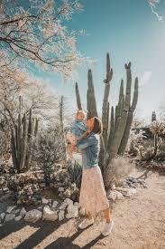 arizona tucson botanical garden