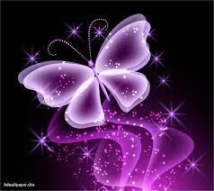 خلفيات عالية الوضوح ل فراشات Butterflies فراشة حيوانات 7