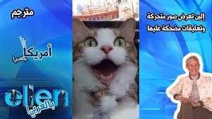 أمريكا بالعربي America Bil Arabi صور مضحكة مع تعليقات أكثر مرحا