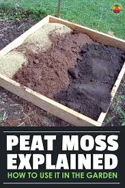 peat moss what it is and how to use it