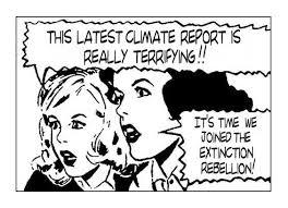 Image result for extinction rebellion cartoon