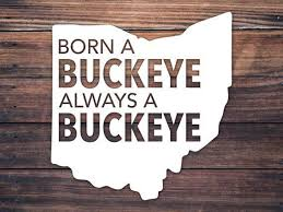 Do You Have A Space In Your Home For A Little Buckeye Love This Born A Buckeye Always A Buckeye Ohio State Decal Is Perfec Ohio State Decals Buckeye Cup Decal