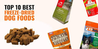 best freeze dried dog foods reviews