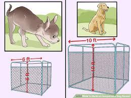 Dog Kennel And Run Plans Free Dunia Belajar