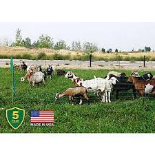 Electric Poultry And Goat Netting Statelinetack Com
