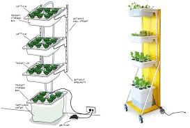 build a hydroponic indoor garden from