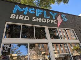 mcfly s bird pe is serving up