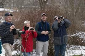Christmas Bird Count a Year-end Highlight | WCAI