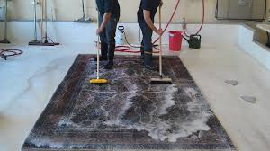 how to clean area rugs somnusthera
